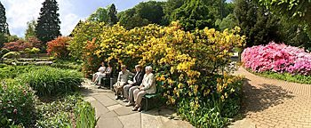 Botanischer Garten Botanischer Garten Bielefeld