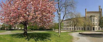 Frühling im Ravensberger Park  Bielefeld