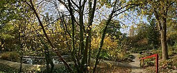 Herbststimmung Botanischer Garten Bochum