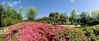 Japanischer Garten Rheinaue  Bonn