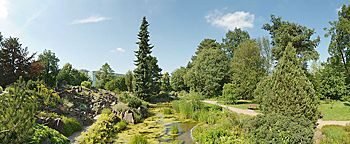 Botanischer Garten Dresden