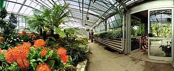 palm garden frankfurt