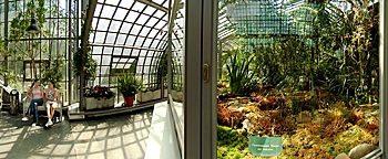 Eingangsschauhaus Palmengarten Frankfurt