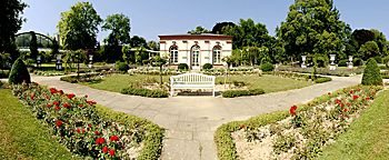 Rosengarten Frankfurt