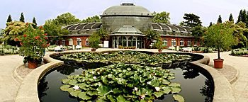 Seerosen-Brunnen Palmengarten Frankfurt