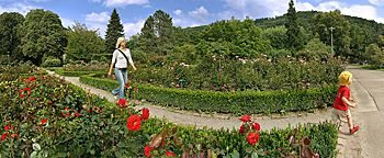 Rosengarten Freiburg
