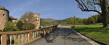 Schlosspark Heidelberg