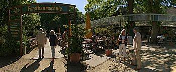 Parkcafe Forstbaumschule Kiel