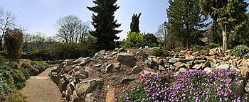 Botanischer Garten Mainz