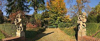 Herbststimmung Mainz