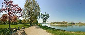 Rheinpromenade Mannheim