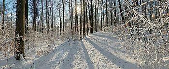 Winterstimmung Osnabrück