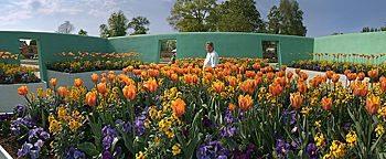 Tulpenbeete BUGA 2009Schwerin