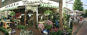 Blumenladen Steinfurt