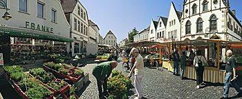 Blumenmarkt Steinfurt-Burgsteinfurt