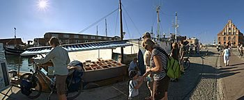 Fischkutter am Alten Hafen  Wismar